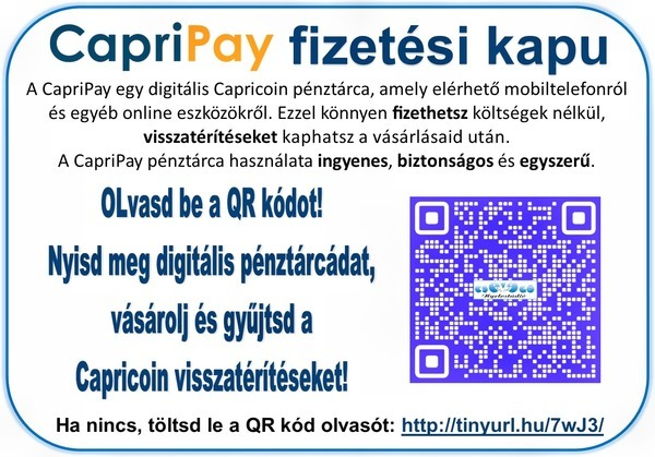 fizetési kapu_jpg